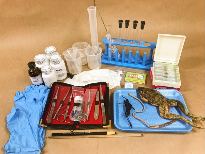 Master Books Biology Supply Kit (Microscope & Slides Included)