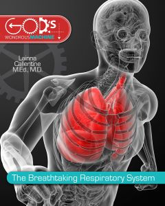 The Breathtaking Respiratory System (Scratch & Dent)
